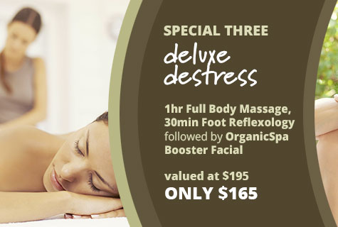 Full Body Massage, Foot Reflexology and Organic Spa Facial offer